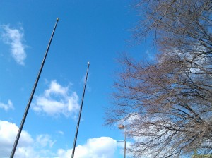 Blue Sky, Trees, and Empty Flag Poles at E. Lafayette & S. President