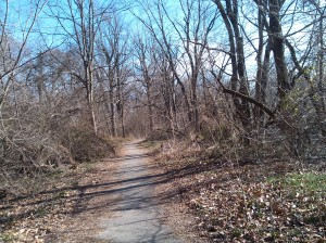 View Down the Herring Run Park Trail Near Harford & Parkside
