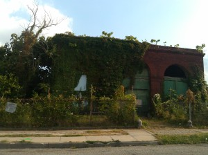 Plants Taking Over a Blighted Building at E. Oliver & N. Durham