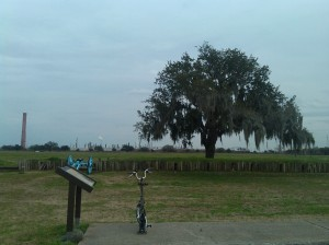 Brompty Checking Out the View at Chalmette National Battlefield