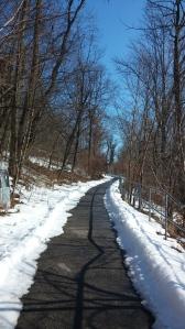 Gwynns Falls Trail