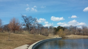 Blue Skies and Twiggy Trees at Patterson Park