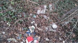 Trash at St. Paul & Mount Royal