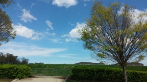 Blue Skies at 36th & Ellerslie