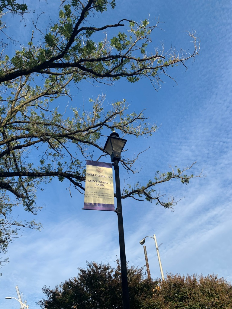 Picture of a blue sky with a whisper of white clouds. A tree and a lamp post are also in the picture.