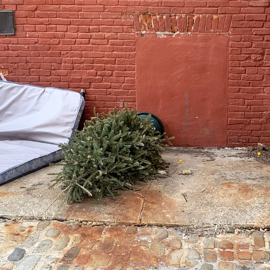 Old mattress and Christmas tree in an alley against a red brick wall.
